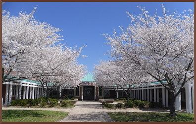 Lake Wylie Elementary